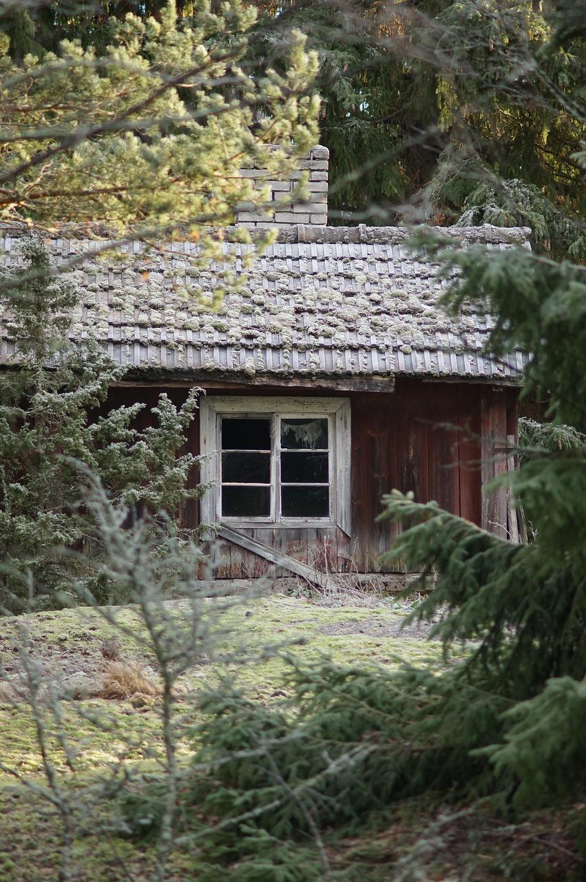 Cottage Frost Torp Hoarfrost Hut  - Urminsynvinkel / Pixabay